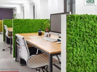 wandverkleidung_pflanze_mosswall_acoustic_wasabi_moos_verdeprofilo_moospanel_mooswand_wandmoos_interior-design_greenwall_wohn-room
