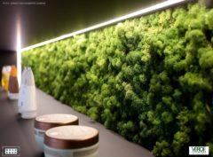prod_pflanze_mosswall_sebastian-giuseppe-change_verde-profilo_wohn-room