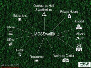wandverkleidung_pflanze_mosswall_moos_verdeprofilo_greenwall_wohn-room